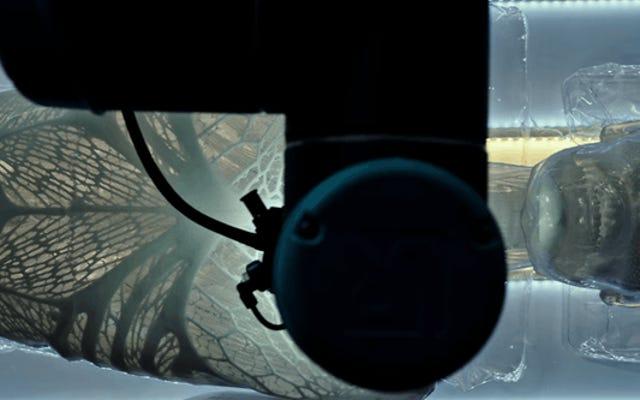 Eine neue Vorschau von Alien: Covenant enthüllt den beunruhigenden Ursprung der Androiden