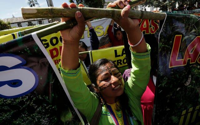 Пять крупнейших банков мира вкладывают миллиарды в разрушение Амазонки