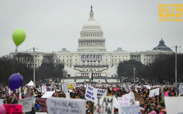 Так много политиков были оскорблены Женским маршем таким оригинальным образом