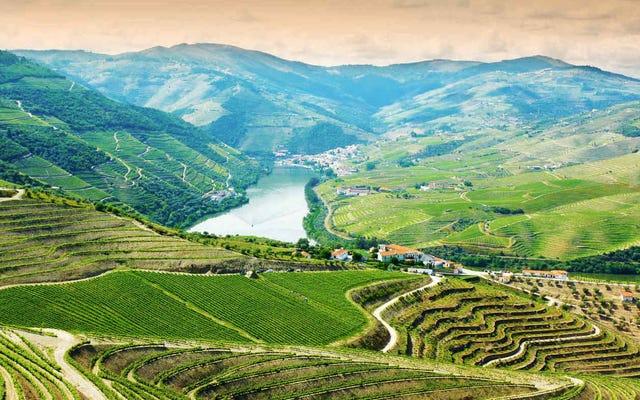 このバケーションパッケージでポルトガルの光景、音、そしてワインをお楽しみください
