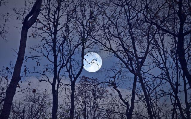 今週末の月食を見つける方法と時期