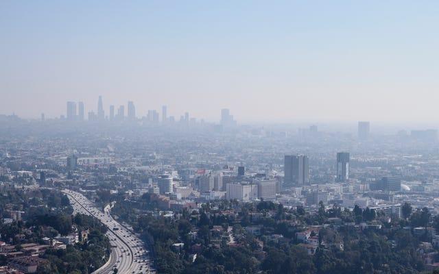 「不健康のガンボ」:新しいレポートは、大気汚染が黒人アメリカ人にどのように不釣り合いに影響するかを明らかにします