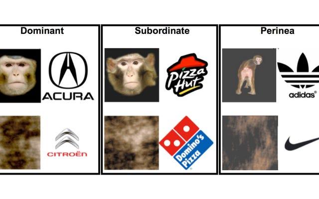 Mengapa Ilmuwan Mengajari Monyet untuk Mengaitkan Logo Merek dengan Alat Kelamin