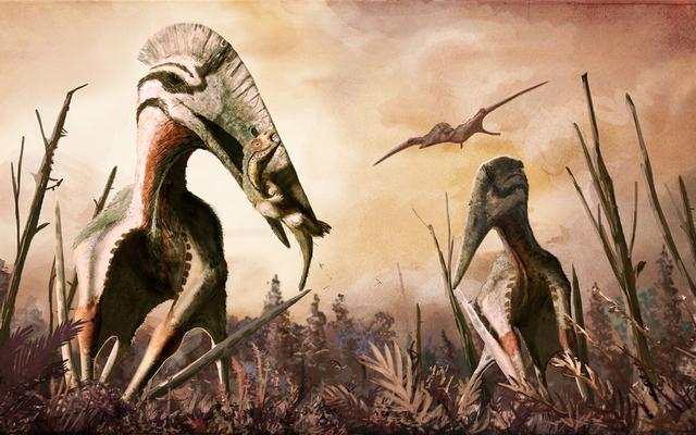 T-Rexを忘れてください:この12メートルの翼幅の飛行恐竜は馬のサイズの獲物を狩りました