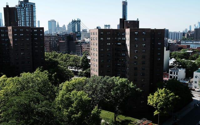 Thành phố New York cuối cùng cũng thừa nhận rằng hơn 800 trẻ em sống trong nhà ở công cộng đã được kiểm tra mức độ chì cao