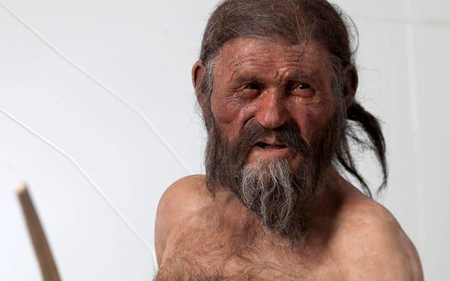 5300年前にアルプスで亡くなった人間の最後の昼食はベーコンと非常によく似たものでした