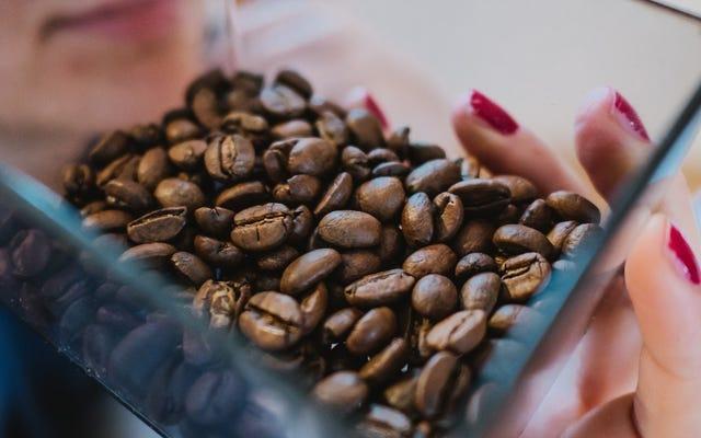 วิธีที่ฟอร์ดผลิตชิ้นส่วนรถยนต์ด้วยเมล็ดกาแฟที่ใช้แล้วของแมคโดนัลด์