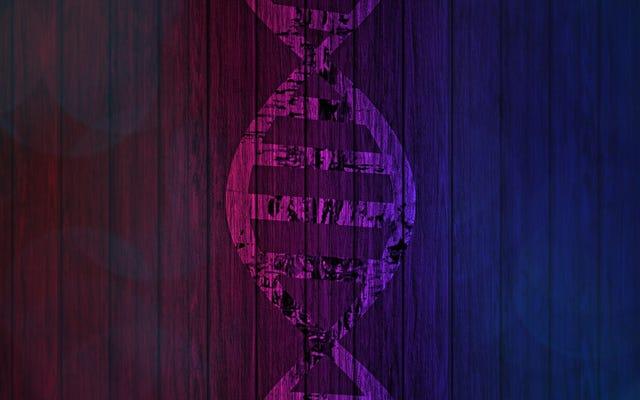 आपके आनुवांशिक परीक्षण के परिणाम बदल सकते हैं - यहाँ क्यों है