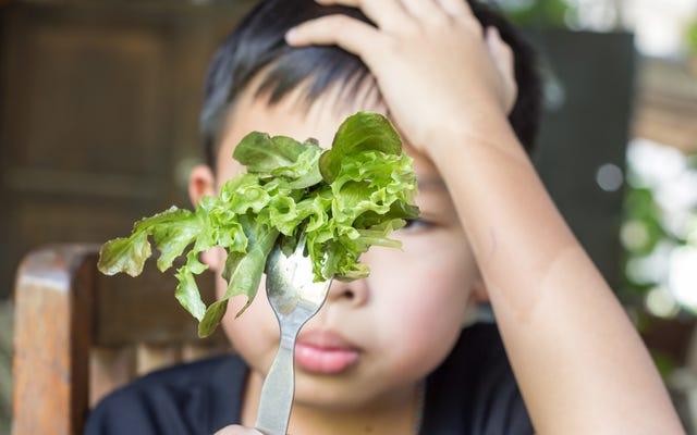 Çocuklara 'Seçici Yiyenler' Demeyi Bırakın