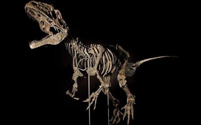 Hóa thạch của một con khủng long vô danh được bán đấu giá giữa các triệu phú vì các viện bảo tàng không đủ khả năng mua nó