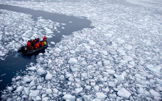 Вот что может случиться, если лед Антарктиды тает снизу