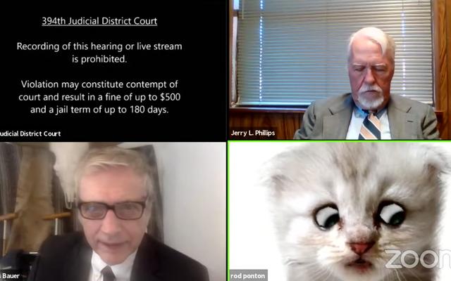Cat met enfin à profit son diplôme de droit