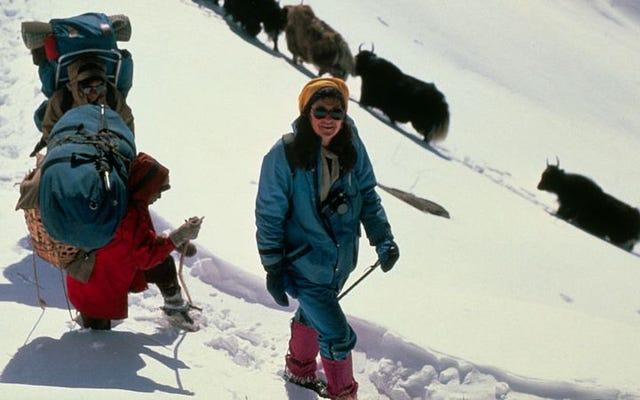 Bu haftaki Podmass'ta köfte pişiren, dağlara tırmanan ve Zeyna'ya tapan kadınlar