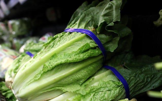 CDC Mengatakan Beberapa Selada Romaine Sekarang Aman untuk Dimakan — tetapi Jangan Hancurkan Penjepit Salad