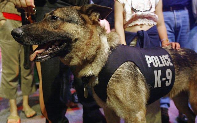 Direniş'e hoş geldiniz, İngiliz polis köpeği