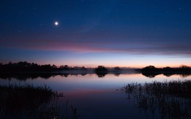 2月を通して展示されている最も明るい惑星を捕まえる方法と時期