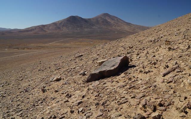 มีสิ่งมีชีวิตใกล้เคียงที่สุดที่เราต้องไปถึงดาวอังคาร