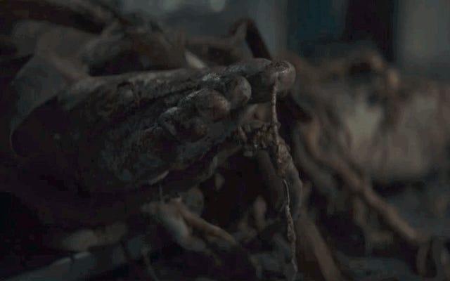 Il primo trailer allarmante di Swamp Thing porta l'orrore floreale nell'universo DC