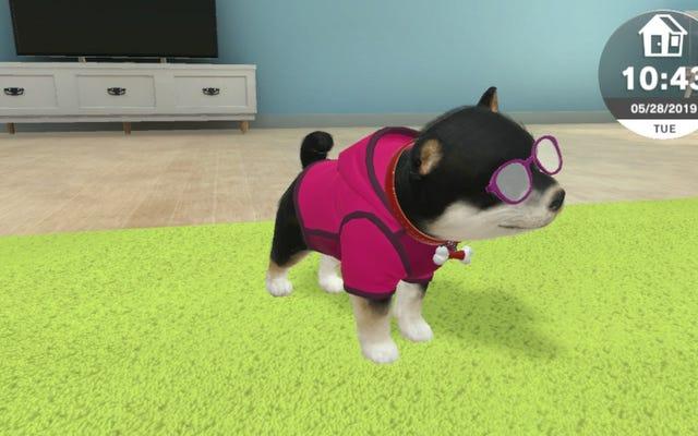 Sim thú cưng mới cho máy chuyển đổi không phải là Nintendo nhưng nó vẫn tốt hơn con chó thật của tôi