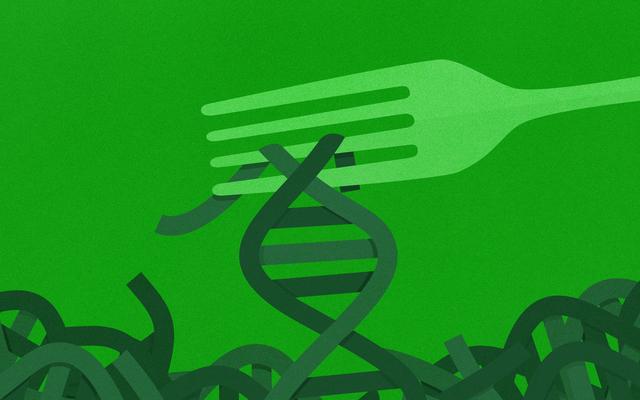 DNAテストは本当にあなたが体重を減らすのを助けることができますか?