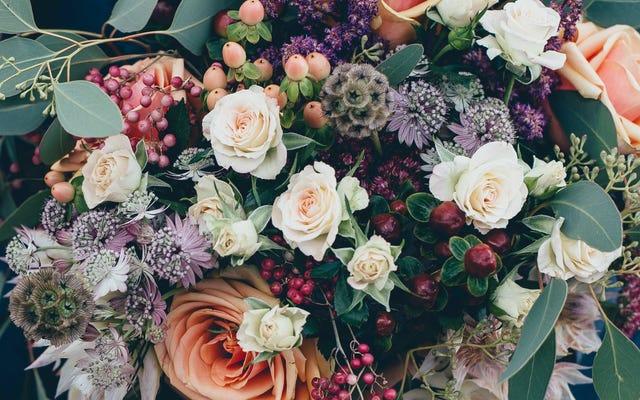 สถานที่สั่งซื้อดอกไม้ออนไลน์ที่ดีที่สุดคืออะไร?