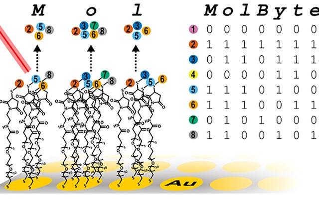 ความก้าวหน้าในการจัดเก็บข้อมูลแบบใหม่สามารถบีบข้อมูลมูลค่าของห้องสมุดลงในโปรตีนหนึ่งช้อนชา