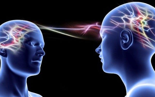 उन्हें पता चलता है कि हमारे दिमाग एक दूसरे के साथ तालमेल बिठाते हैं ताकि हम आतंकवादी हमलों और प्राकृतिक आपदाओं का सामना करें