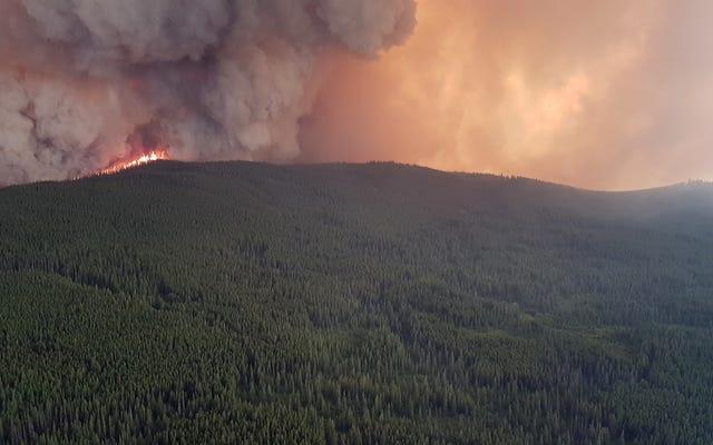 Świetnie, teraz kanadyjski dym z pożaru przechodzi przez Atlantyk
