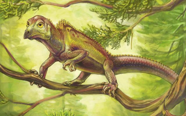 この古代の爬虫類は、鳥が死ぬ1億年前に、奇妙な鳥のような頭を進化させました
