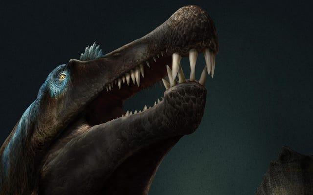 Đuôi của khủng long dưới nước đáng sợ được bảo quản tốt cho thấy nó là một vận động viên bơi lội đáng sợ