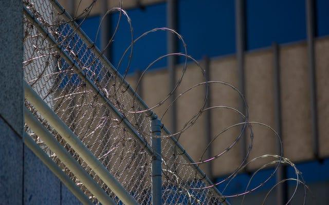 ICE được cho là đang tìm kiếm những người nhập cư châu Phi bị giam giữ để buộc trục xuất trước cuộc bầu cử