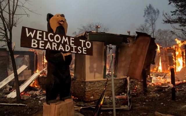 北カリフォルニアの火事で街全体が焼け焦げたパラダイス