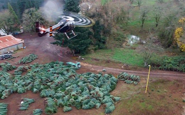 ヘリコプターの鞭がクリスマスツリーを運ぶのを見ると、私は休日の精神に浸ります