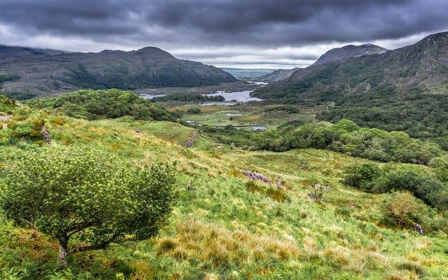 ไอร์แลนด์เป็นประเทศแรกที่เลิกใช้เชื้อเพลิงฟอสซิลอย่างเป็นทางการ