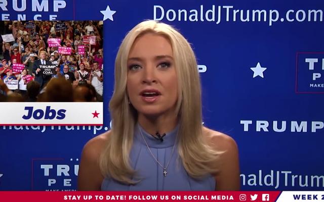 CNN Pundit Who Bỏ cuộc vào thứ Bảy xuất hiện trở lại với tư cách là Người tuyên truyền cho Facebook với giá thuê thấp của Donald Trump