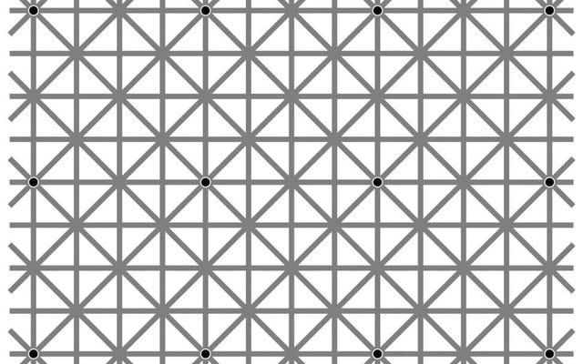 12個の黒い点すべてを一度に見ることができますか?
