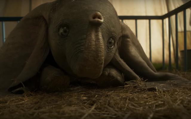 El nuevo tráiler de Dumbo es aún más extraño que el anterior