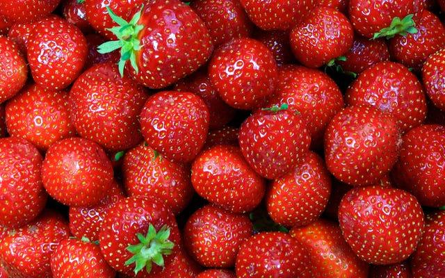 オーストラリアのいくつかの病気の野郎はイチゴに針を隠しています