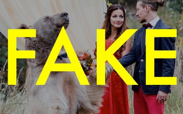 そのロシアのクマの結婚式は完全に偽物でした