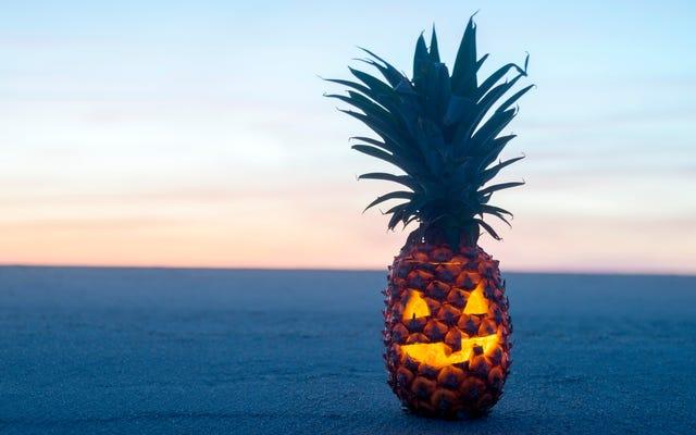 Dernier appel: Qui est ici en train de sculpter des lanternes à l'ananas?
