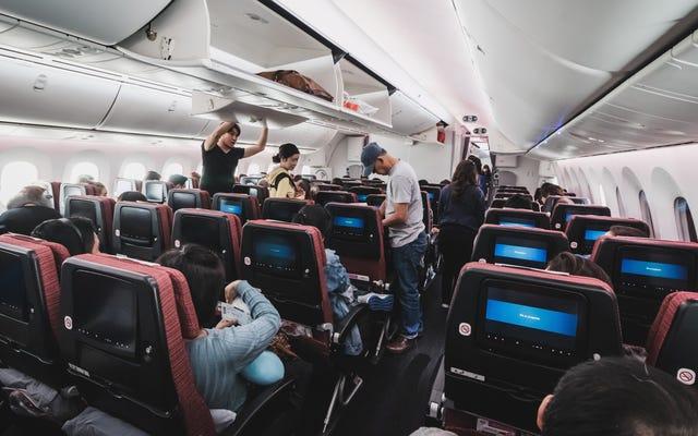 Cómo sobrevivir al asiento del medio