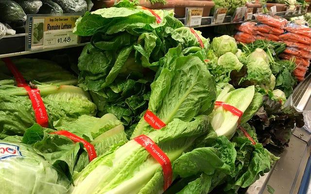 นี่คือสิ่งที่ผิดปกติกับ Romaine Lettuce