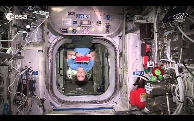 宇宙飛行士はISSでタオルの多くの使用法を示すことによってタオルの日を祝います