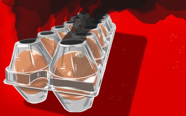 卵会社がプラスチック包装に目を向けているというばかげた理由