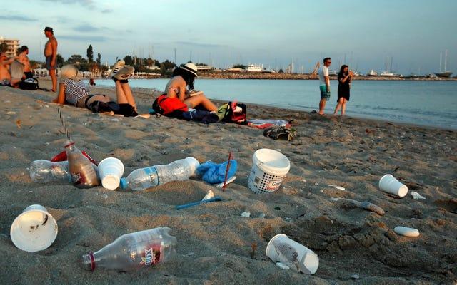 यूरोपीय संघ के राष्ट्र सर्वसम्मति से 2021 तक प्लास्टिक के एकल-उपयोग पर प्रतिबंध लगाने के लिए सहमत हुए