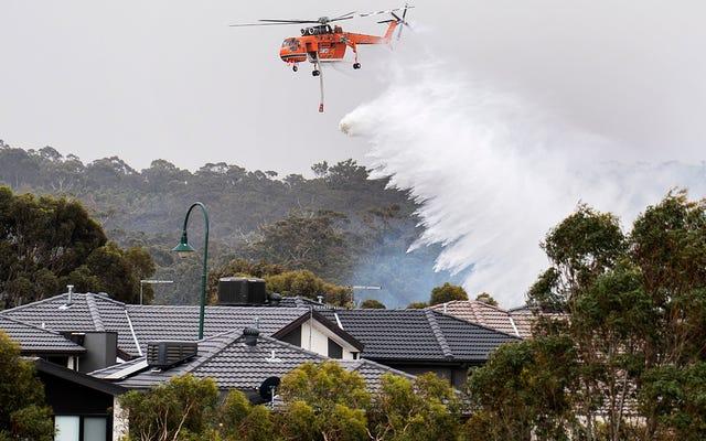 Pożary wciąż pustoszą Australię, a tysiące podobno uciekają na plaże w stanie Wiktoria