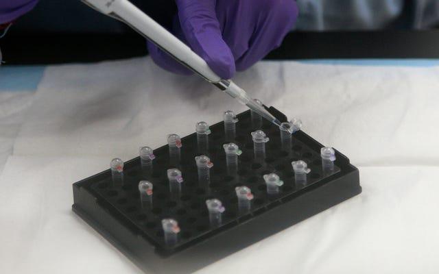 पूर्वजों और 23andMe आपके डीएनए को सौंपने के लिए नए नियमों से सहमत हैं