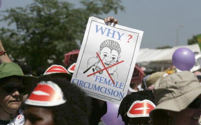 Mich。Doctorが2人の少女に女性性器切除を行ったと非難