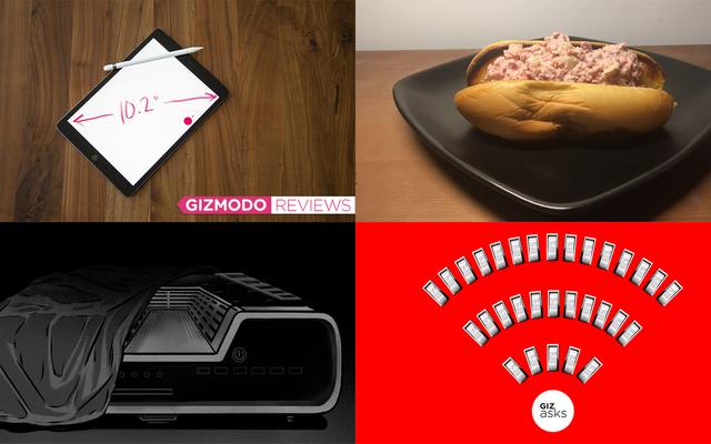 Deadly Fungus, Fat Bear Week, PS5 Leaks e Hot Dog Salad: le migliori storie di Gizmodo della settimana