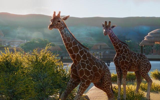 ใน Planet Zoo คุณจะได้รับความดีโดยการเรียนรู้ข้อเท็จจริงเกี่ยวกับสัตว์เท่านั้น